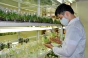 Tìm hiểu ngành Khoa học cây trồng là gì? học gì? ra trường làm gì?